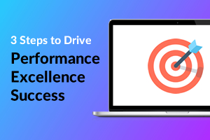 3 Steps to Drive Performance Excellence success
